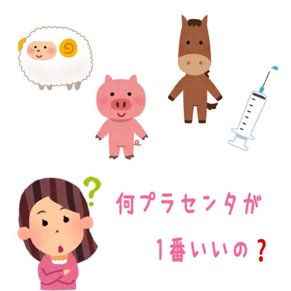 【モアーズマガジン⑩】何プラセンタが1番いいの🐷???