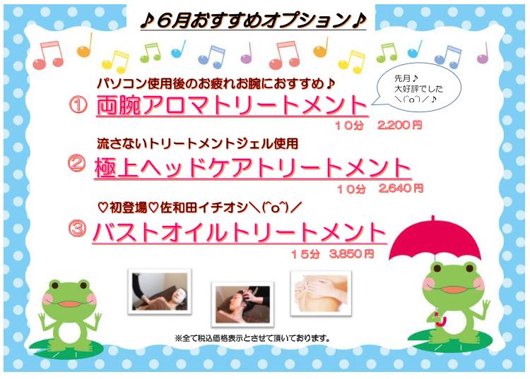 【モアーズマガジン vol.19】6月おすすめオプション